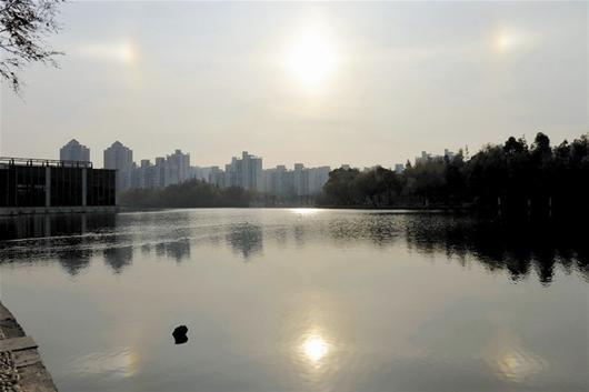 上海三个太阳