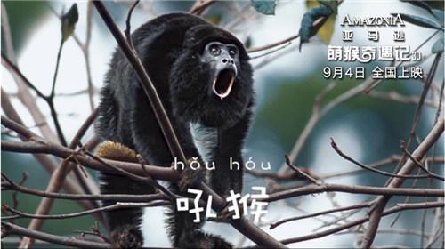动物题材电影《亚马逊萌猴奇遇记》将上映