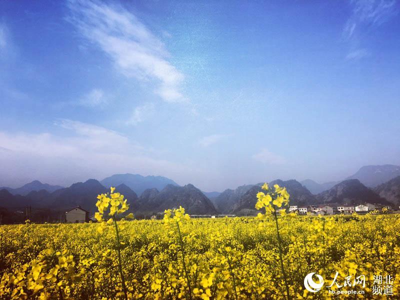 嫘祖故里远安油菜花节开幕 花海中演绎丝绸文化美轮美