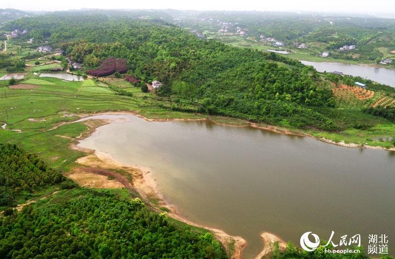 枝江市航拍督查保护饮用水库生态环境图片