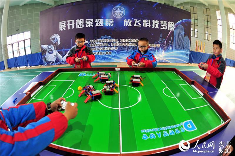 湖北宜昌:青少年竞技科技筑梦想 体验创新助成长图片