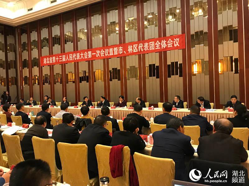 代表点赞湖北省政府工作报告:实事求是 催人奋进