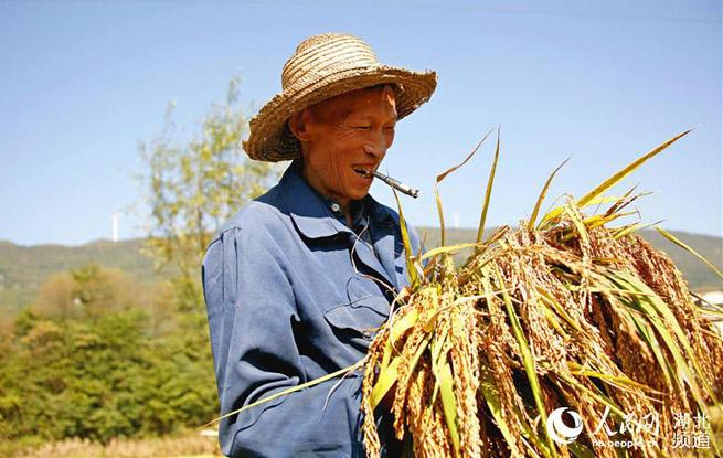 """湖北利川首届""""中国农民丰收节"""" :乡村来举办农民当主角"""