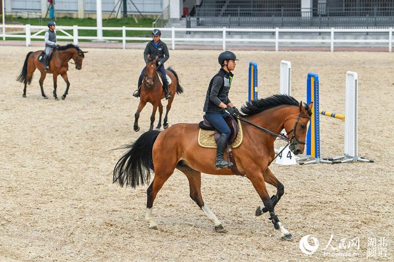 探访武汉军运会马术赛场:马蹄入砂深度精确到毫米 专业马医院呵护赛马健康