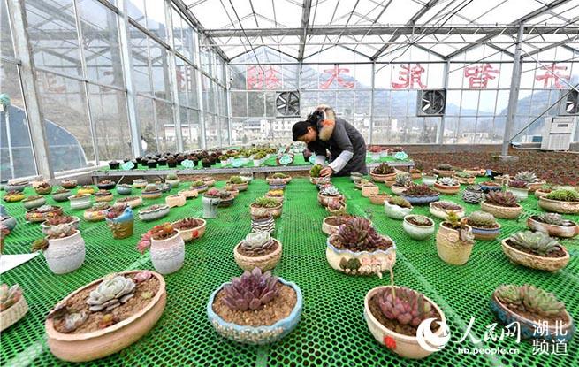 保康经济总量_保康九路寨风景区图片