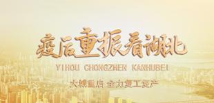 疫後重振看(kan)湖(hu)北4月12日,外交部向全球推(tui)介湖(hu)北、向全球 @武�h,我��共(gong)同��C!〔��x〕