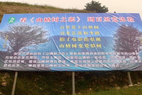 电视版《山楂树之恋》在宜昌夷陵区热拍