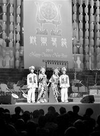悉尼编钟视频音乐献演中国--湖北频道--人民夜国乐微